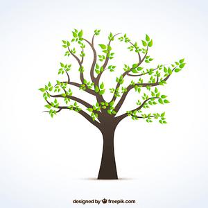 hypnobirthing babymassage duisburg marie sanfte geburt plazenta lebensbaum baum stammbaum